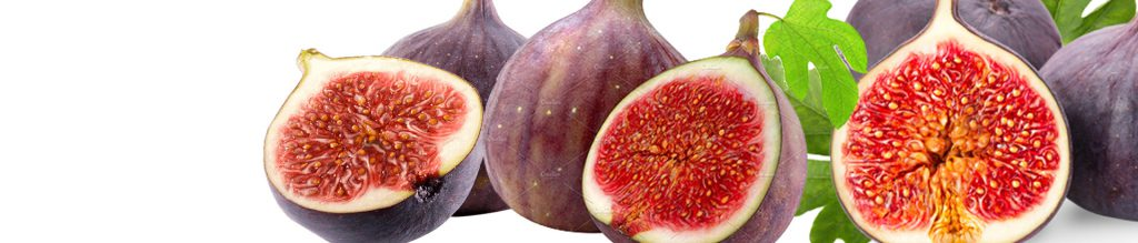 Bursa Black Fig